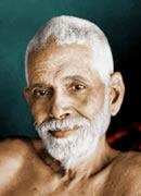 quotes by ramana
